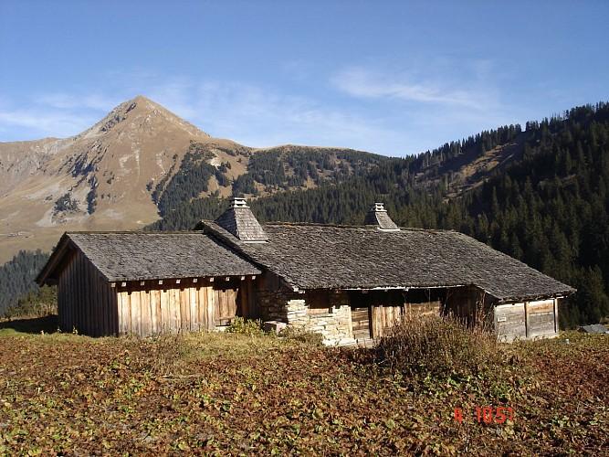Itineraire : A la decouverte des alpages autour du Lac des Plagnes