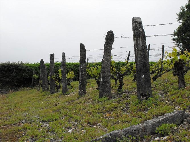 Les Bigues de Parmilieu