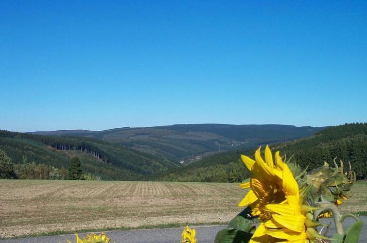Séjour au coeur de l'Ardenne