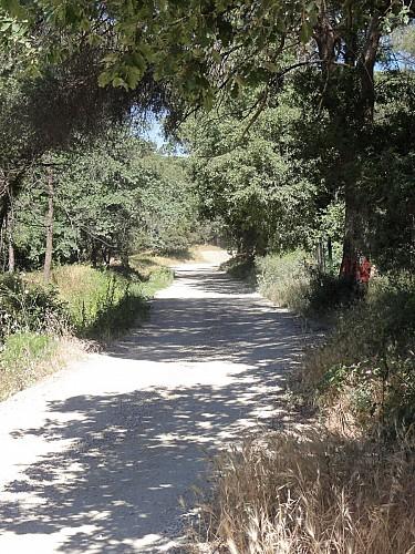 Chemin de Compostelle - portion Puget sur Argens