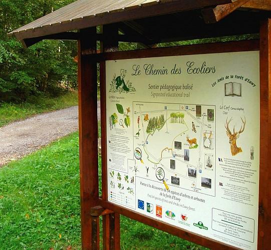Vers la Forêt d'Eawy