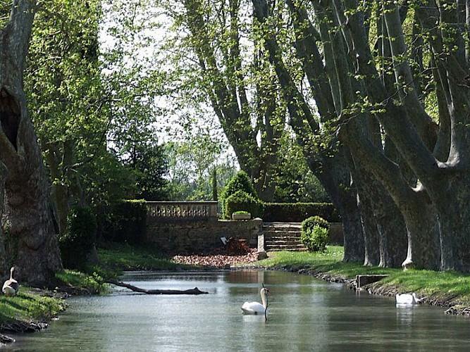Saint Rémy de Provence - Eyragues - Saint Rémy de Provence