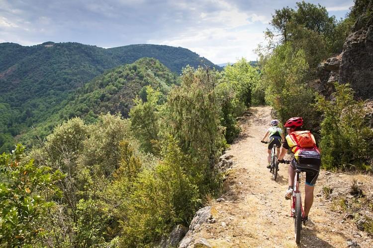 Enduro VTT Lalouvesc-Tournon sur Rhône difficile