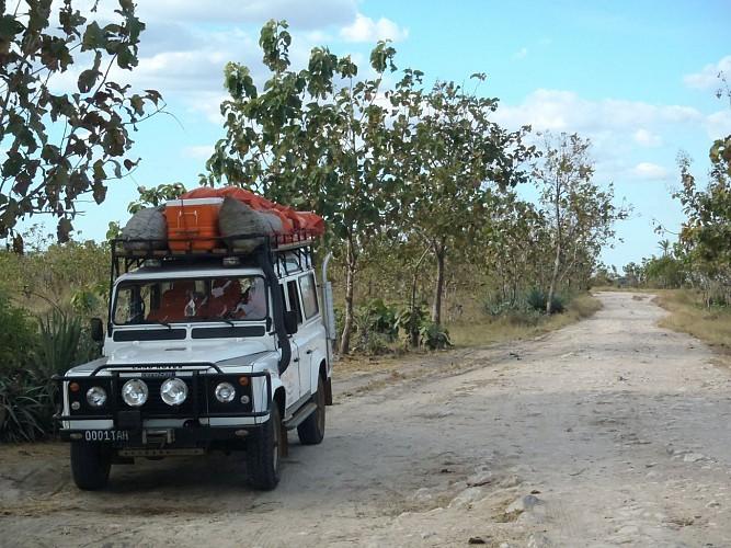 A la découverte de l'ouest de Madagascar