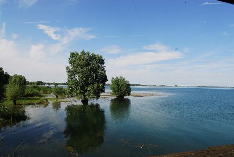 De la forêt d'Argonne au lac du Der