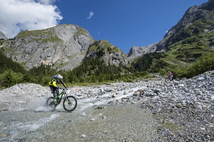 Arcelin Kid downhill trail