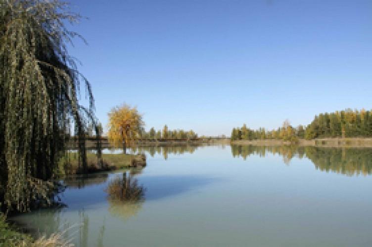 Boucle au départ de Seysses, par le canal de St Martory, le tour complet des lacs Bidots