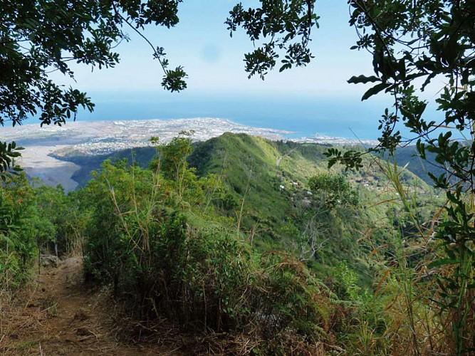 Dos d'Ane: The Piton de Sucre Loop