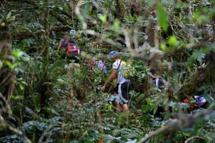 La réserve biologique de Bois de Nèfles (par le sentier Cambourg)