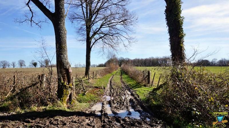 Saint-Léger-Magnazeix - Prieuré des Bronzeaux - 16km - 4h45 - Haute-Vienne (87)