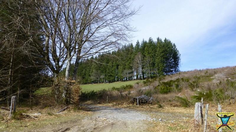 Pérols-sur-Vézère - Ruines des Cars - 12km - 3h00 - Corrèze (19) - Limousin