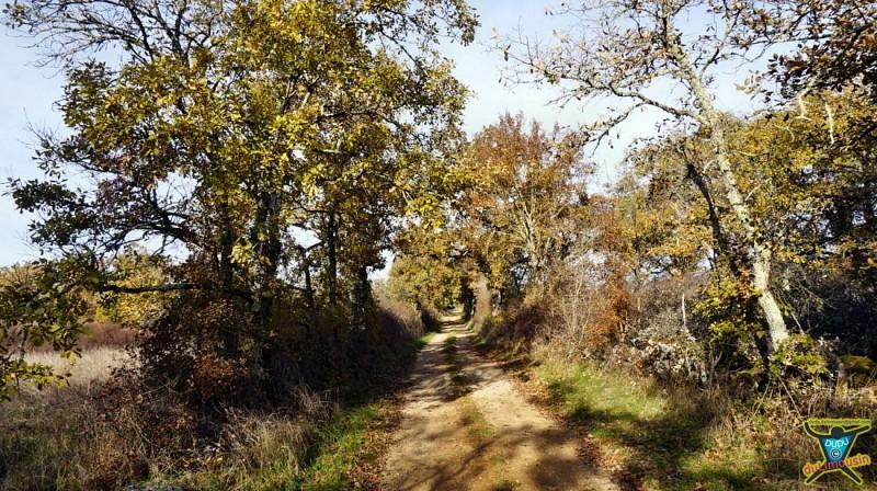 Septfonds - Circuit de la Tombe du Géant - 10km - 3h00 - Tarn-et-Garonne (82)