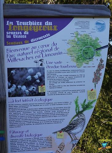 Tourbière du Longeyroux - Sentier des Linaigrettes - 1km - Corrèze (19)