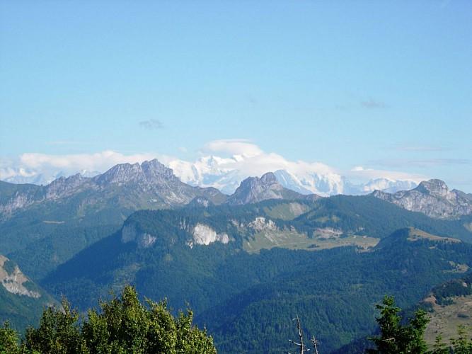 Le Mont Blanc, vu du Forchat