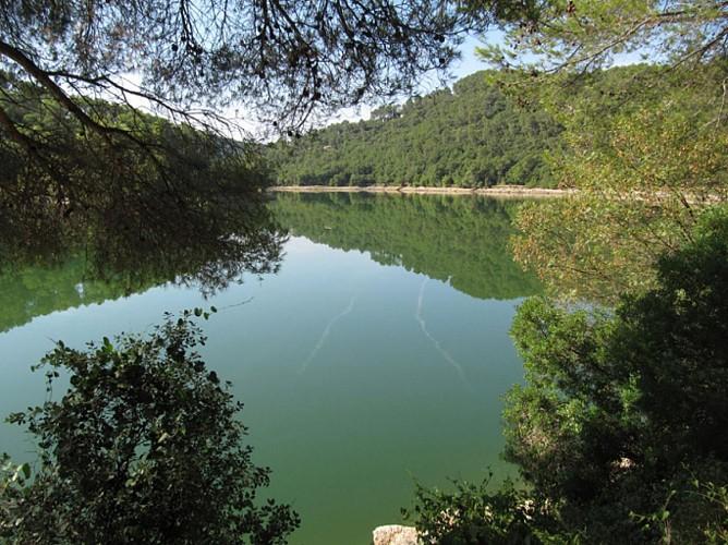 Miroir sur le lac de Carcès