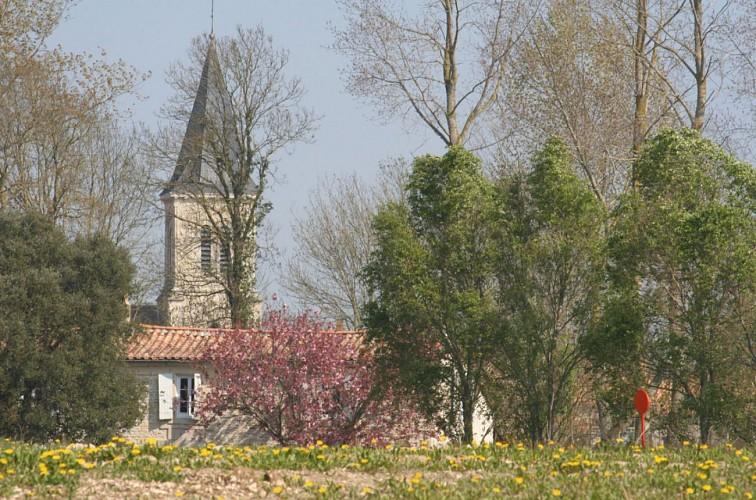 Eglise d'Amuré
