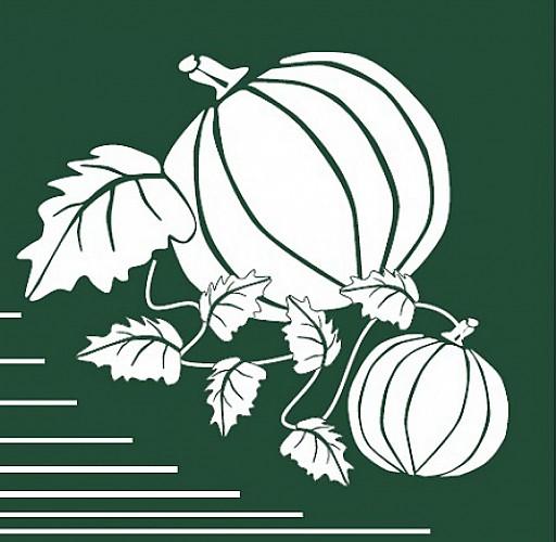 Balisage du circuit du Melon