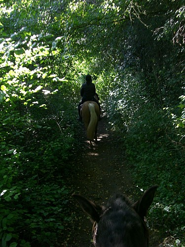 Chemin normand