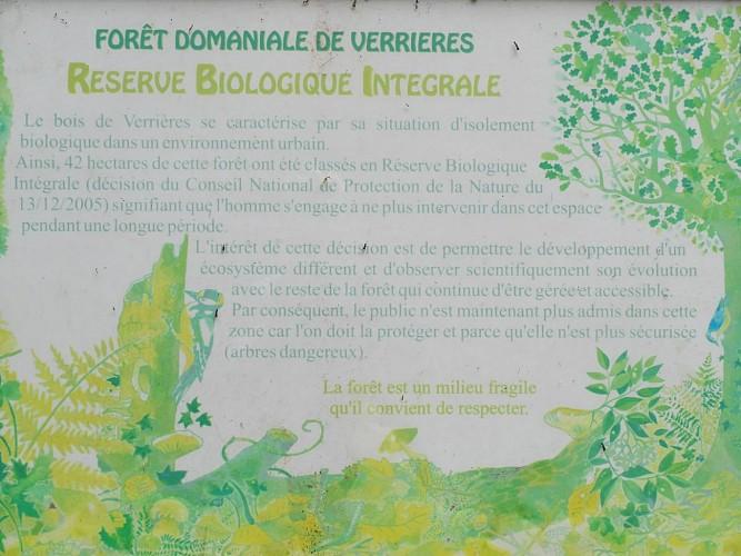 Métro Vélo Dodo 2 (tour de la forêt domaniale de Verrières)
