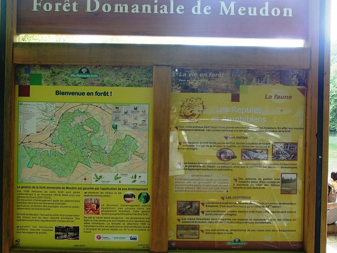 METRO VELO DODO 3 (tour de la forêt domaniale de Meudon)