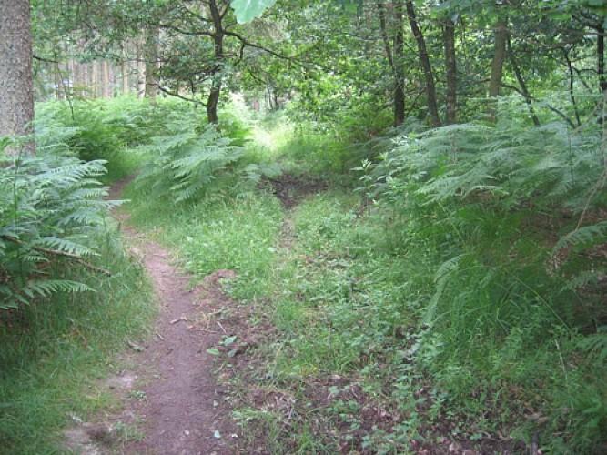 Promenade de Hermalle
