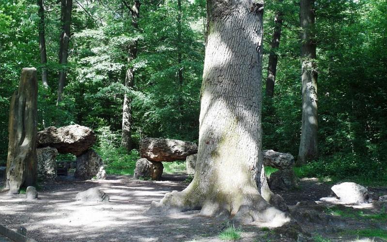 Le sentier des Treize Ponts (forêt domaniale de Meudon)
