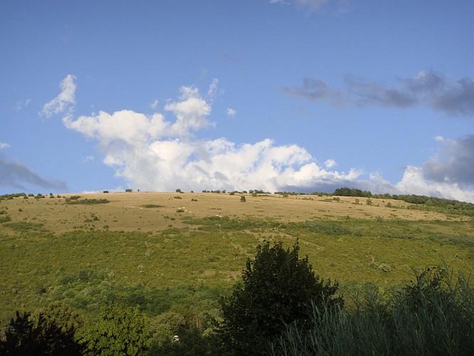 Le Mont-Myon par Plain Champ