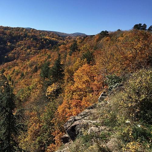 vue coté vallée de Chamalière