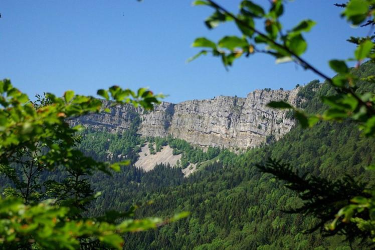 Vue sur les falaises du Mont d'Or