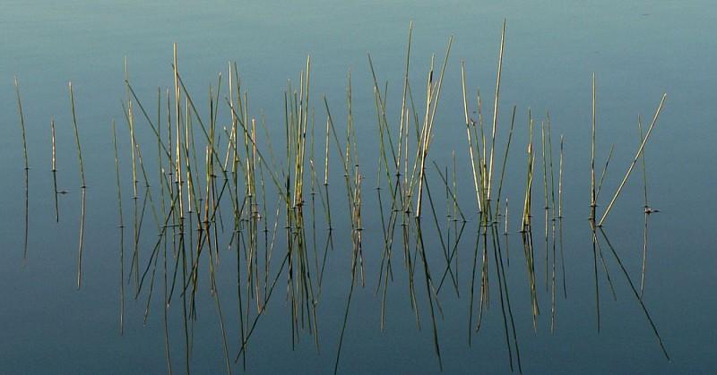 tour du lac de charpal