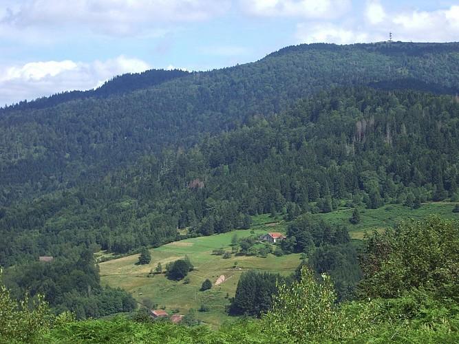 Circuit Le Grand Bois