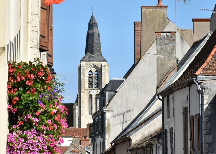 Beaulieu_sur_Loire_JDA7446_1