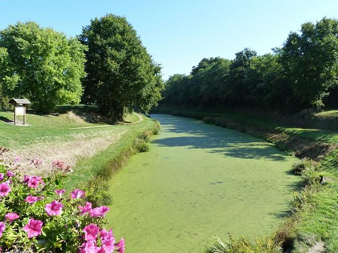 Canal et Brin d'Amour