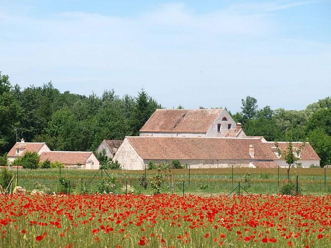 Moulin de Châtillon