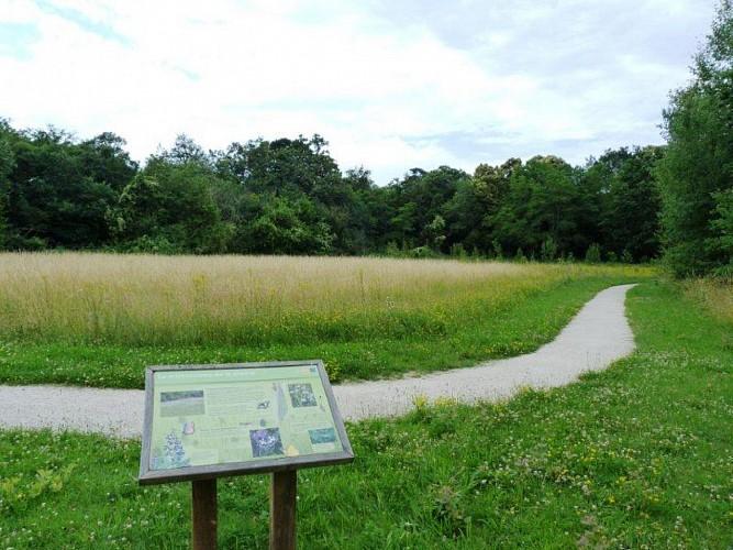 Chateauneuf : Parc naturel départemental de Châteauneuf-sur-Loire