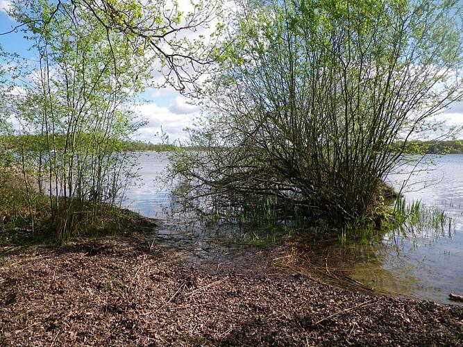 Cerdon : Parc naturel départemental de l'Étang du Puits