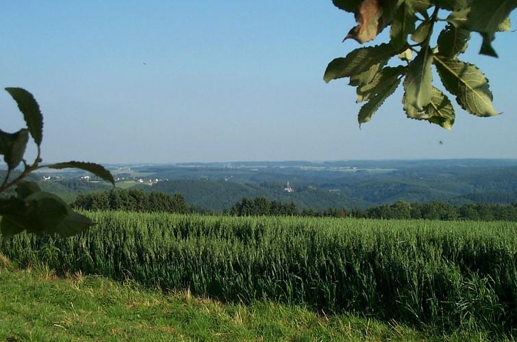 A vélo à La Roche-en-Ardenne