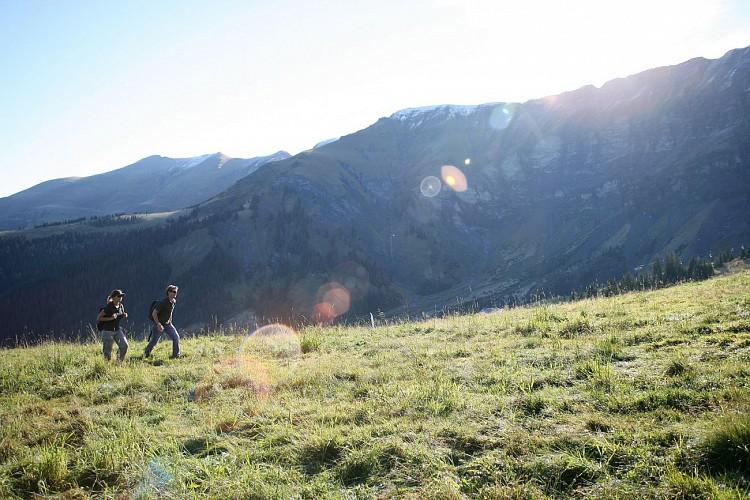 Hiking : the Mont d'Arbois - Mont Joux