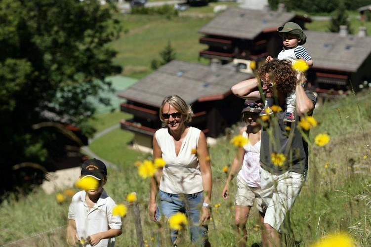 Hiking : Rochebrune - Cote 2000