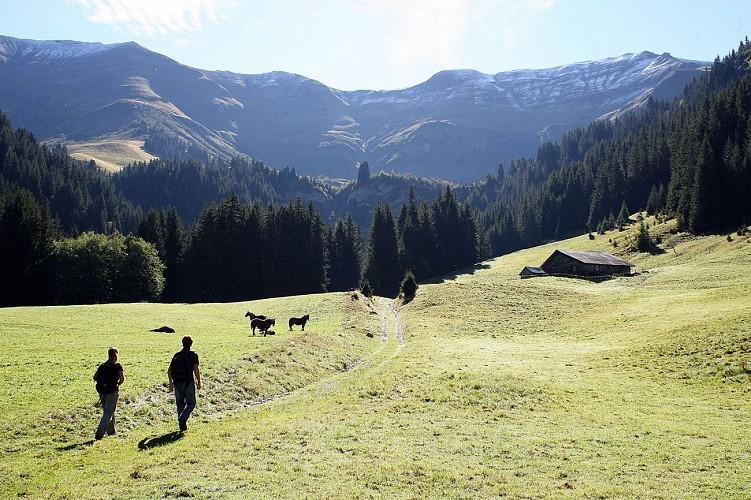 Hiking : Combafort - Plein Rocher