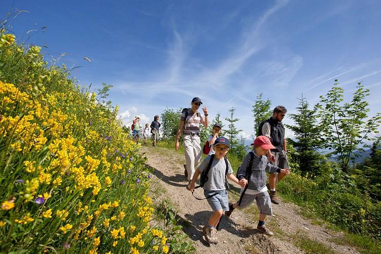 Hiking : Le Planellet - Les Pettoreaux, par le Stepan