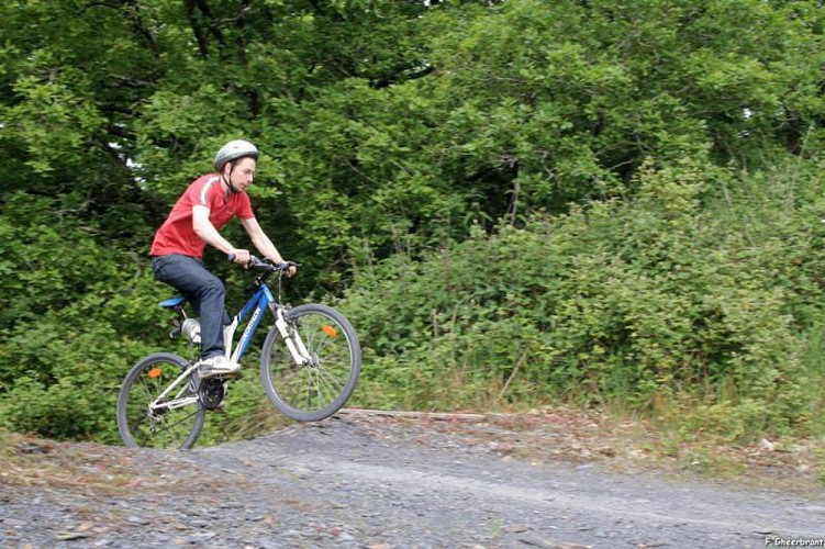 Circuit VTT d'interprétation