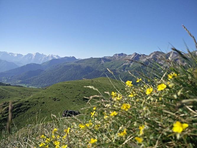 Le Pic d'Escurets à Bilhères en Vallée d'Ossau