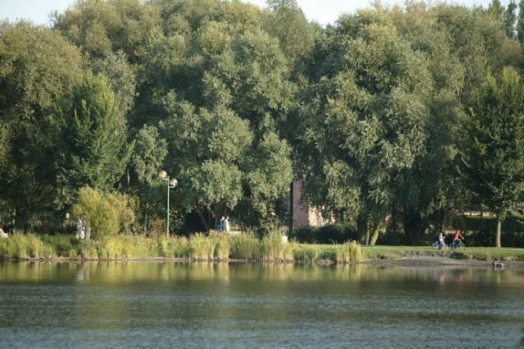Circuit du Marais des onze Villes 2