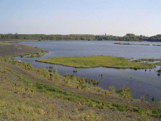 Rieulay circuit du marais des onze villes
