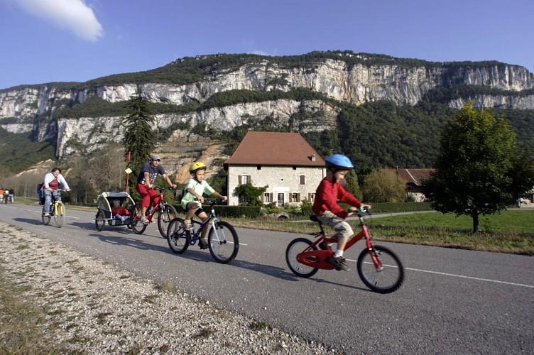 Au bord du Rhône à Leschaux