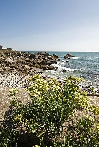 Vivifiante côte sauvage - A vélo du Pouliguen à Batz sur mer