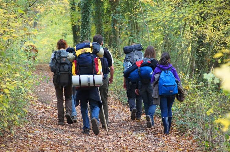 La Grande Traversée de la Forêt du Pays de Chimay / Macquenoise - Philipeville