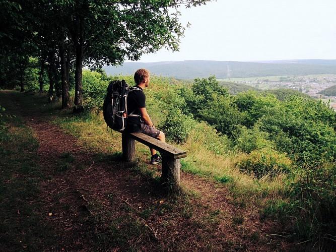 La Grande Traversée de la Forêt du Pays de Chimay / Sivry - Hastière