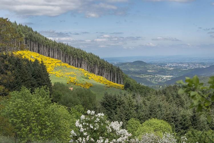 Point de vue depuis la Croix de Chirol